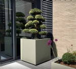 Brushed Stainless Steel Cube Planters